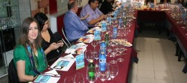 Wine UP Tour en La Bodega de Meyos (Alicante)