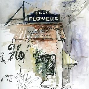 vintage_hills_flowers