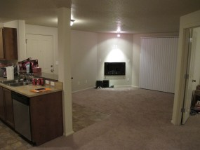 Living Room (missing TV above decorative fireplace)