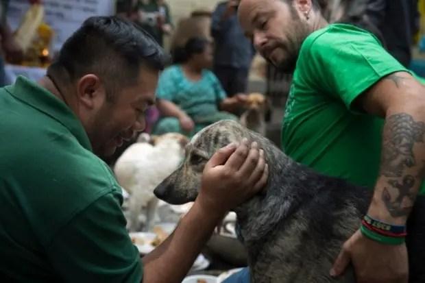 mujer-ayuda-perros-nepal-terremoto-alivio