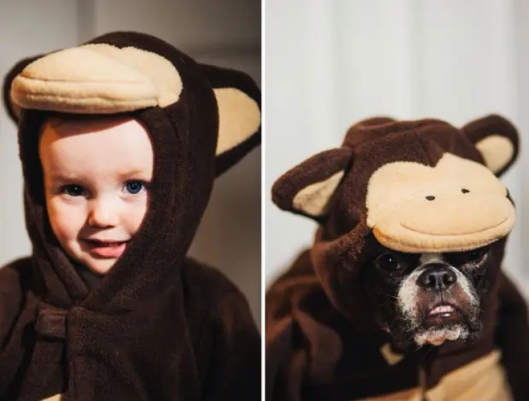 I-Photograph-My-Daughter-And-Dog-In-The-Same-Setting18__880