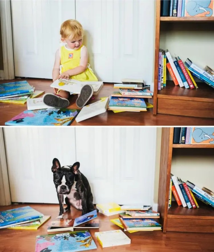 I-Photograph-My-Daughter-And-Dog-In-The-Same-Setting3__880