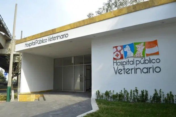 hospital público veterinario naucalpan