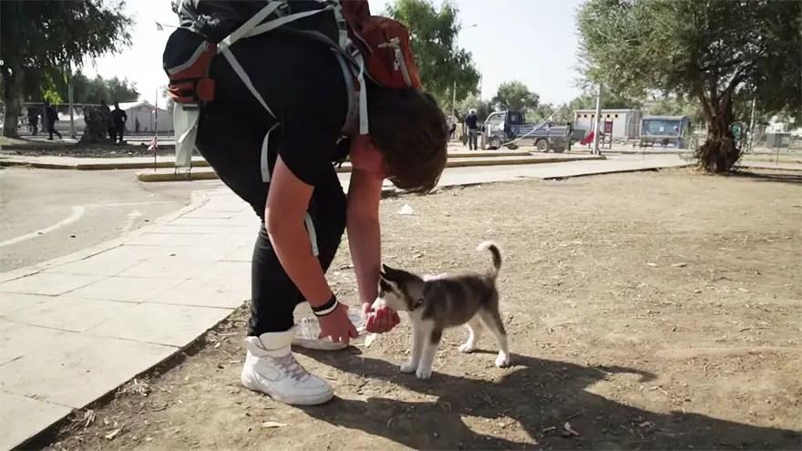 perro-rescatado3