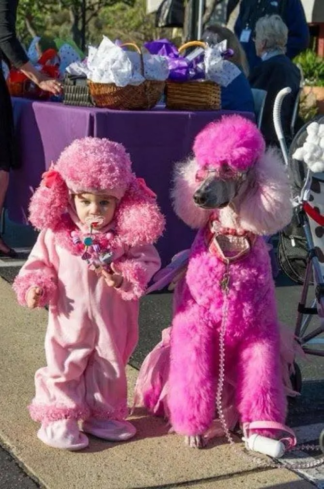 disfraces-halloween-ninos-mascotas11