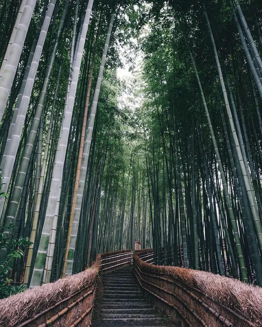 vida en japon 2