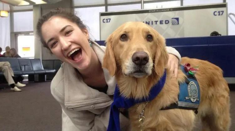utilizan-perros-para-calmar-pasajeros-nerviosos2