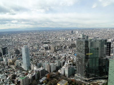 Japan - Tokyo Metropolitan Government Offices (8).JPG