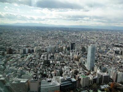 Japan - Tokyo Metropolitan Government Offices (9).JPG