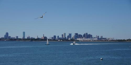 Spectacle Island - Boston (2).JPG