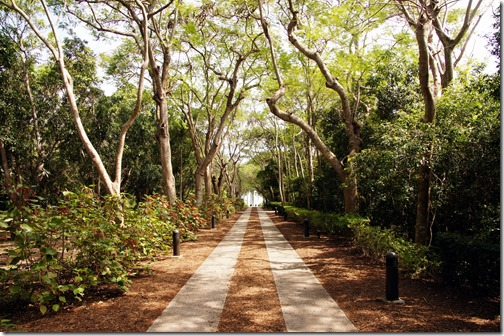 Fairchild Tropical Botanical Gardens - Miami (129)