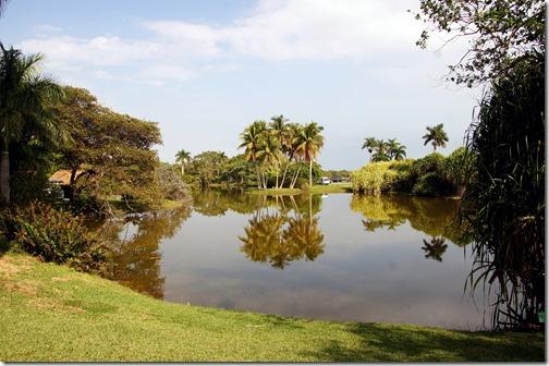 Fairchild Tropical Botanical Gardens - Miami (3)