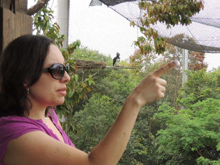 Birdwatching at Parque Historico Guayaquil, Ecuador