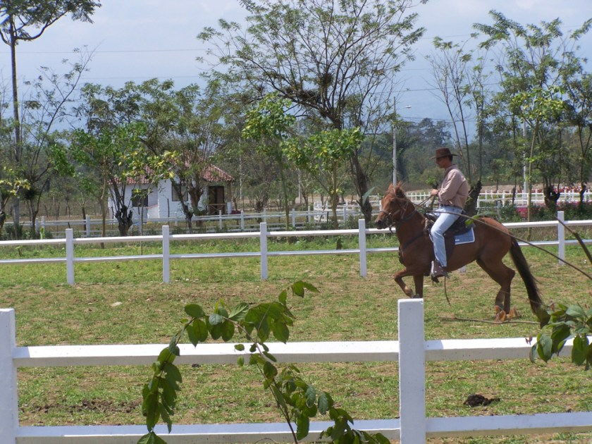 Horse riding in one of the haciendas in the Coastal region