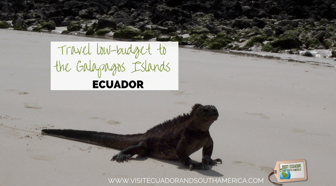 travel-low-budget-to-the-galapagos-islands-in-ecuador