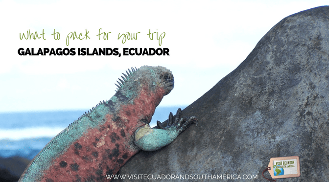 pack-galapagos-islands-trip
