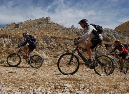 Mountain bike - cincinnato
