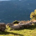 Templi Italici Schiavi