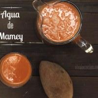 Agua de Mamey: una receta rica en vitaminas y antioxidantes