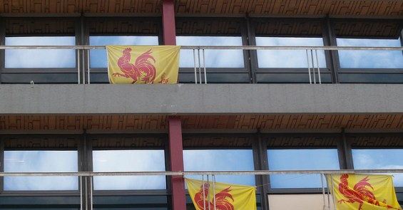 waalse vlag