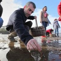 Bretagna: battuta di pesca a piedi con degustazione!