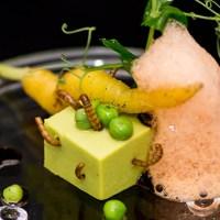 Nizza: alta cucina con vermi!