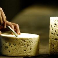 A caccia di formaggi. Francesi