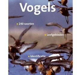 veldgids-vogels