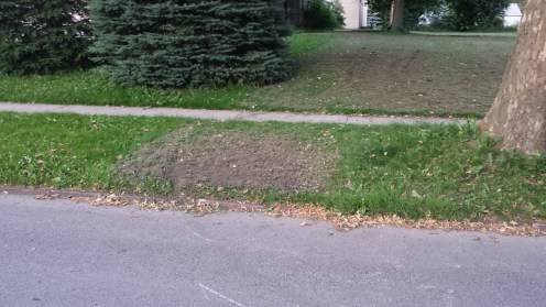 """""""City Of Buffalo"""" Destroyed The Lawn Of Our Church"""