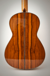 Experimental Classical Guitar, Back Detail