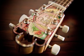 2013 Cigar Box Guitar