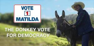 Donkey vote for democracy