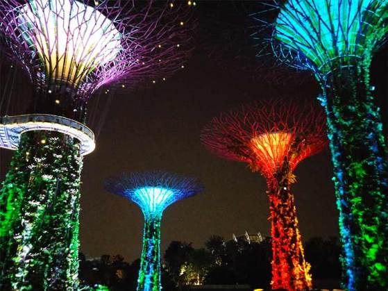 garden-bay-singapour