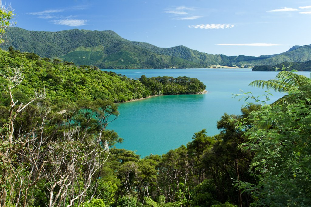 Marlborough Sounds - Onahau Lookout - 1