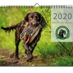 produktfoto-wachtelhundkalender-2020
