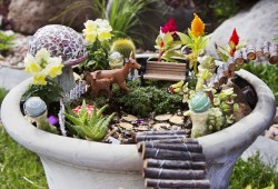 Sophisticated Most About Time We Start Addinga Little Green To Our Inner Fairy Gardens Are A Way To Expressyour How To Make Your Own Fairy Garden Wangers Greenhouses Leaves Have Fallen By