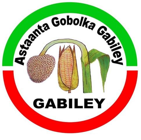 gabiley