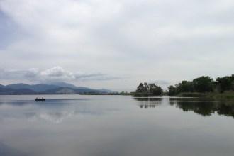 Lake_Massaciuccoli