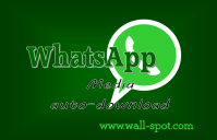 WhatsApp configure auto download
