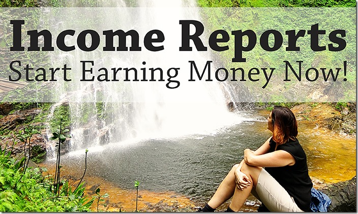 Travel Website Income Reports