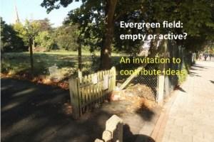 evergreencover