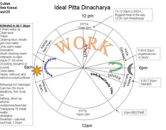 Ideal Pitta Dinacharya