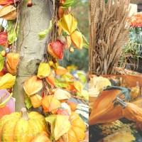 Hallo Herbst 2014.