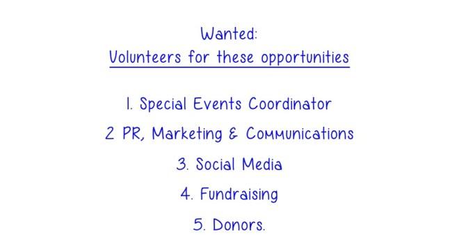 job titles Volunteer Opportunities