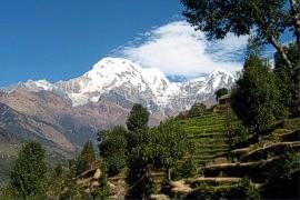 Annapurna Experience