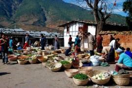 vegetable-market-500x335