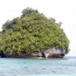 Islet