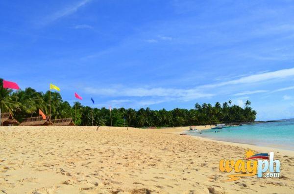 Dako Island Shore