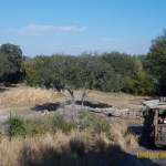 Wild-Africa-Trek-wdwradio-831