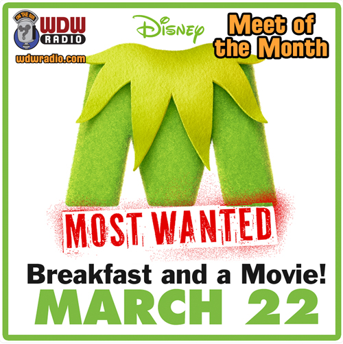 meet-of-the-month-muppets-movie-march-2014